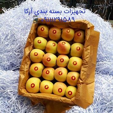 خرید پوشال کاغذی برای میوه